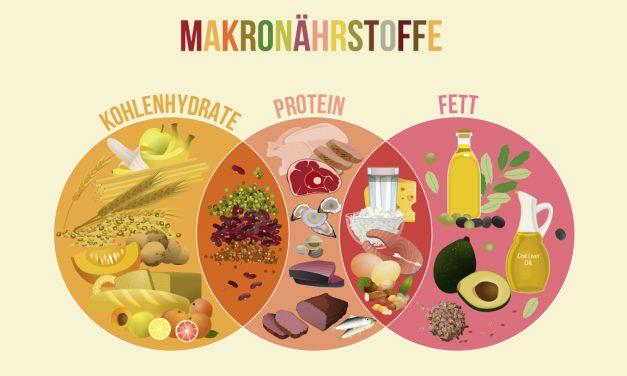 Die richtige Ernährung bedeutet nicht (nur), die richtige Menge an Eiweiß, Kohlenhydrate, Fett und Kalorien zu finden! 👆🏻👆🏻