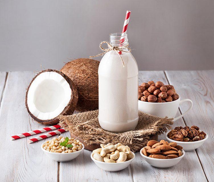 Cashew-Kokos Milch – pflanzliche Milch (eifrei, glutenfrei, milchfrei, sojafrei, vegan)