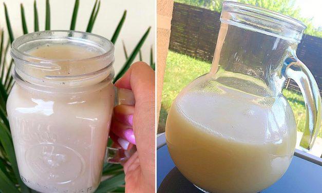 Pflanzenmilch (glutenfrei, milchfrei, sojafrei, vegan, zucker- und süßstofffrei)